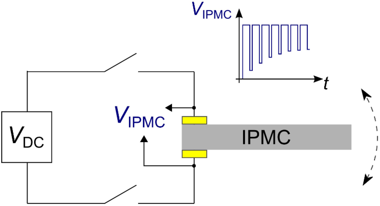 Actuators Free Full Text Self Sensing Ionic Polymer A 656 International Wiring Diagram 04 00017 G010 1024