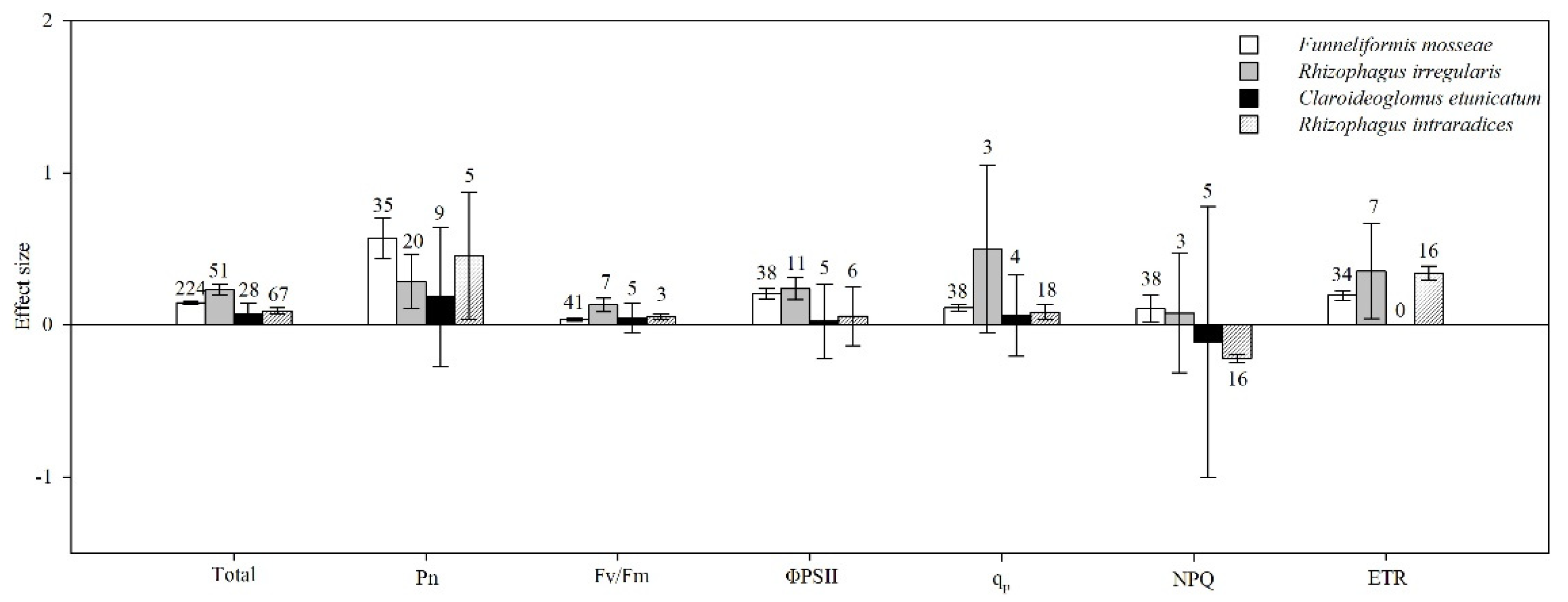 Amf Bz agronomy | free full-text | the effect of arbuscular