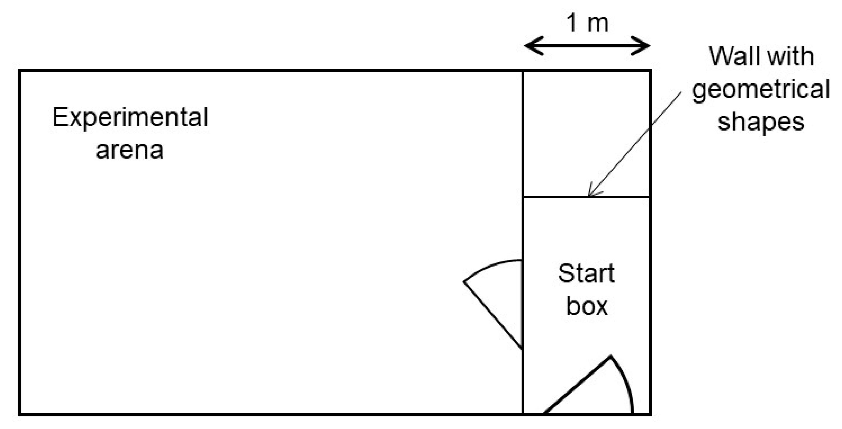 Jensen Vm9312 Wiring Harness Diagram Libraries And Schematics