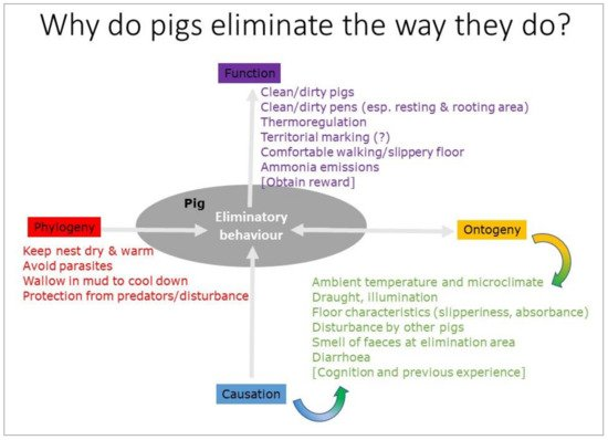 Animals Free Full Text Soiling Of Pig Pens A Review Of Eliminative Behaviour Html