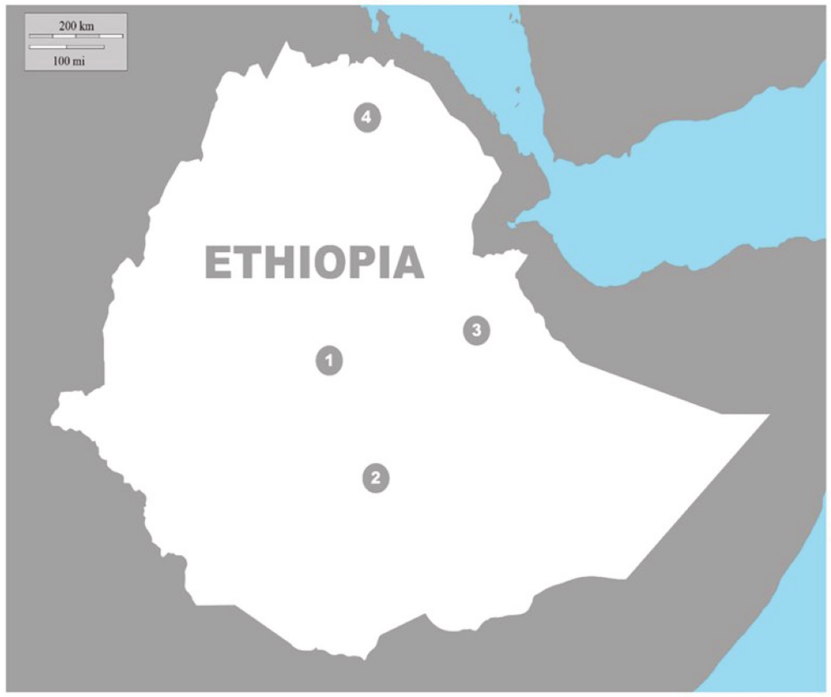 Animals Free Full Text Linking Human Perceptions And Spotted Hyena Behavior In Urban Areas Of Ethiopia Html