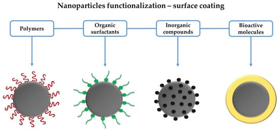 Antibiotics Free Full Text Iron Oxide Nanoparticles For