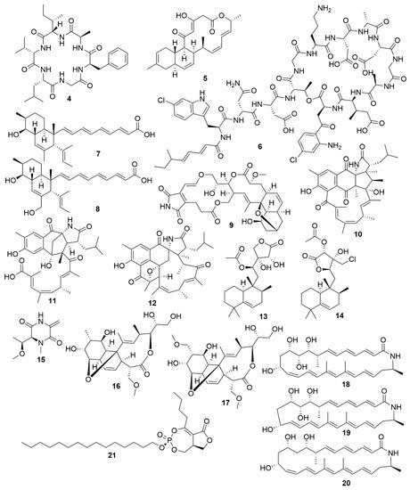 Antibiotics 09 00455 g002 550