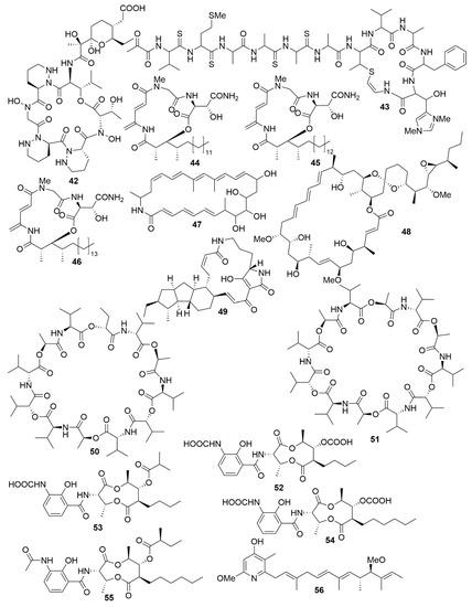 Antibiotics 09 00455 g005 550