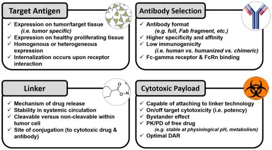 Antibodies | Free Full-Text | Factors Affecting the