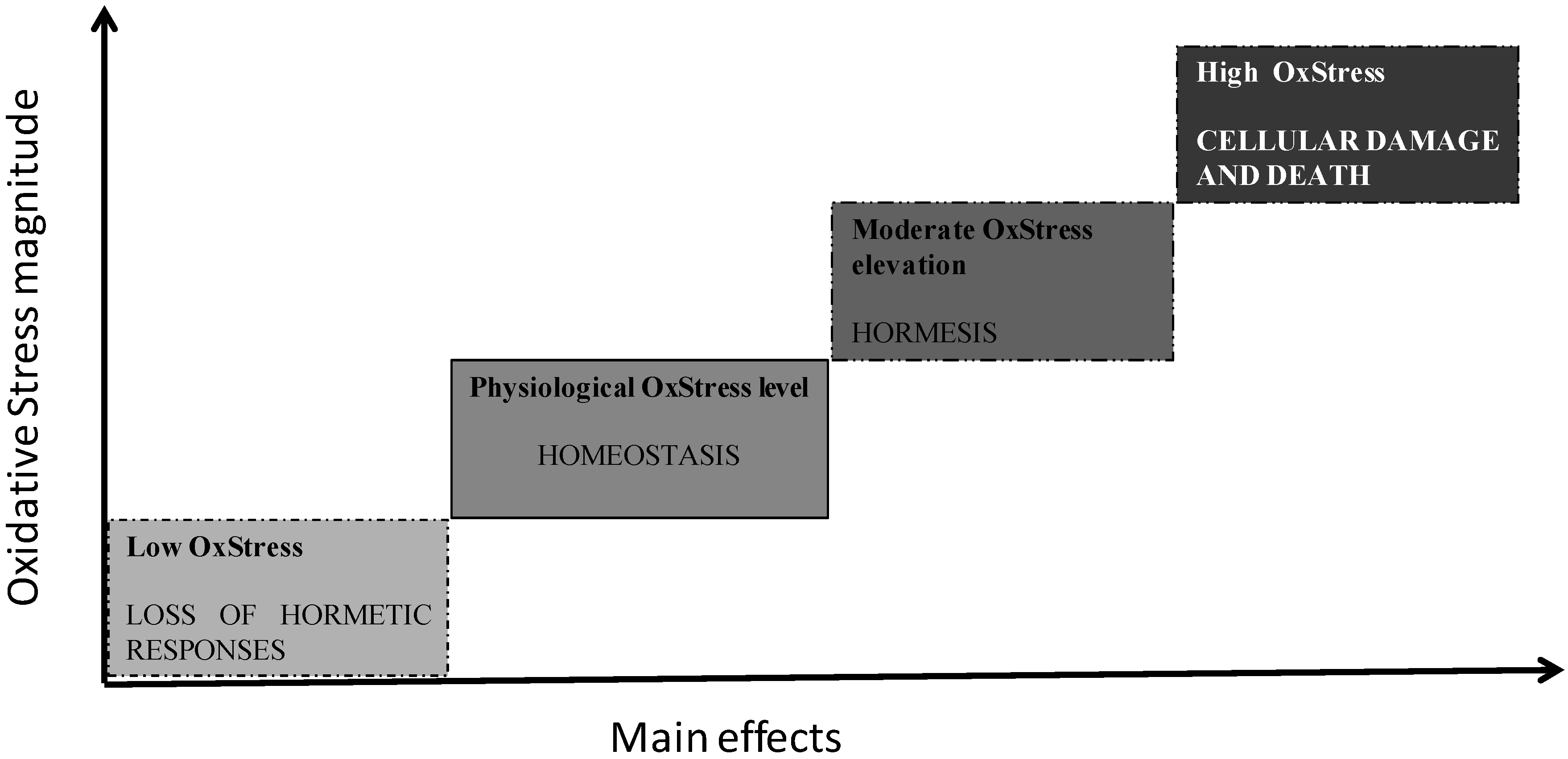 Effects of moderate alcohol consumption on oxidative stress