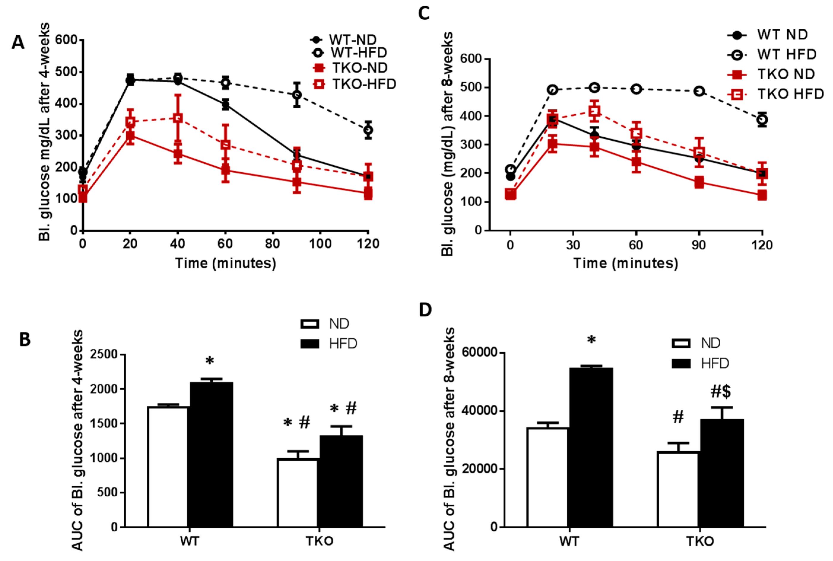 Antioxidants   Free Full-Text   Deletion of TXNIP Mitigates High-Fat Diet-Impaired Angiogenesis ...