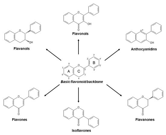 Antioxidants 09 01263 g001 550