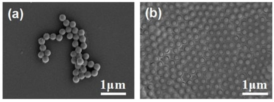 Fabrication and Photo-Detecting Performance of 2D ZnO Inverse Opal Films