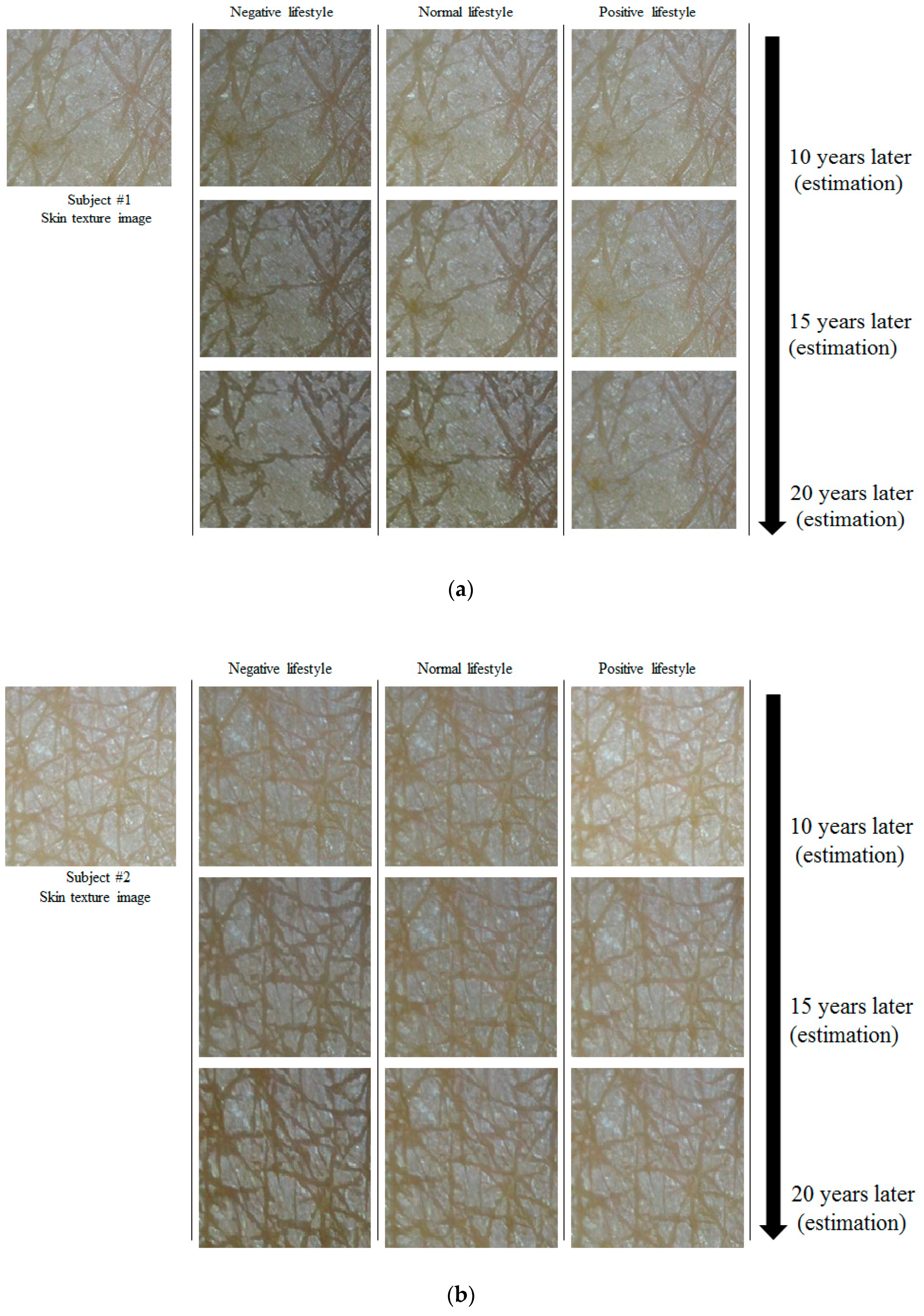 Applied Sciences   Free Full-Text   Skin Aging Estimation Scheme