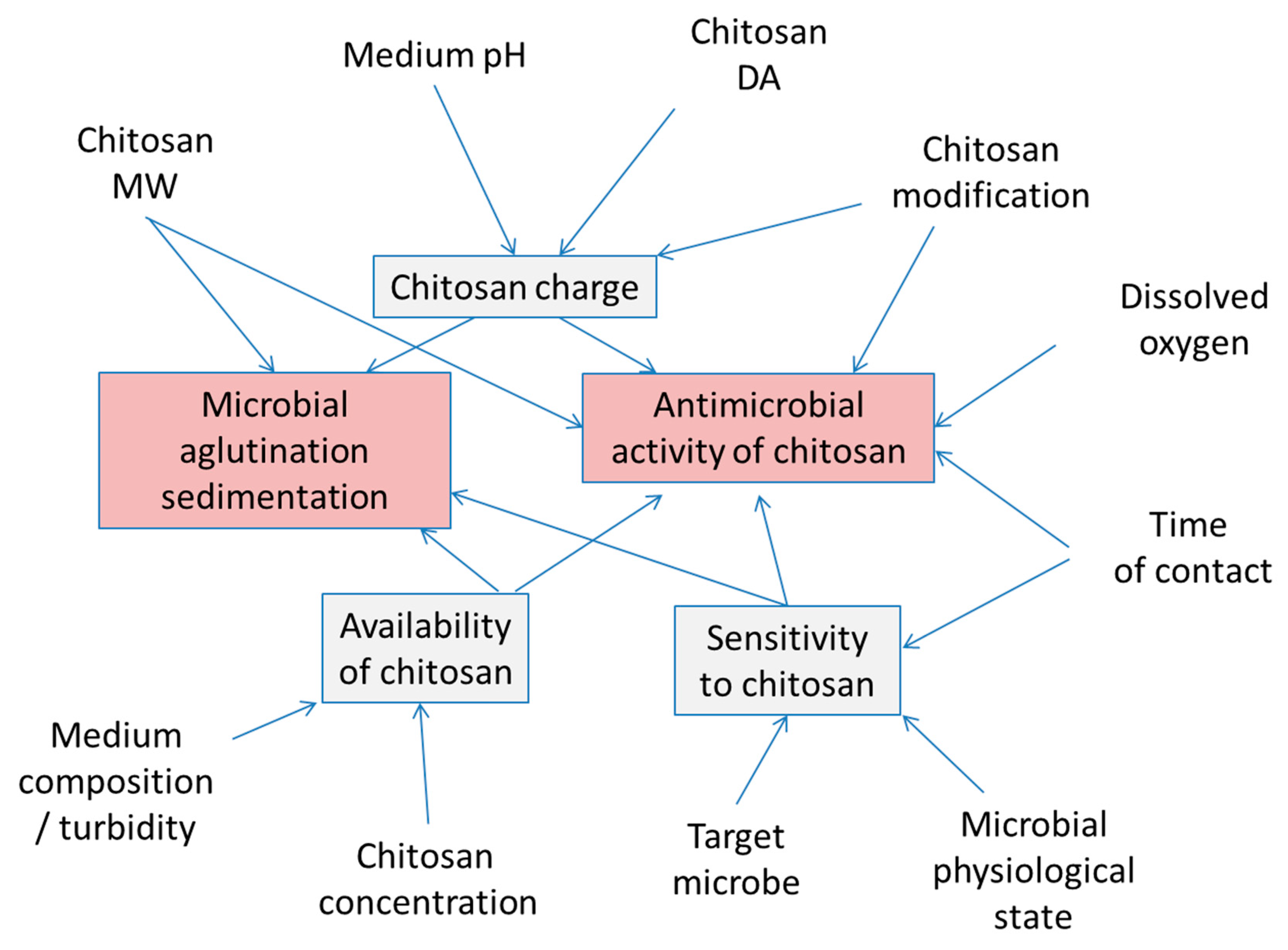 Applied Sciences | Free Full-Text | Modification of Chitosan
