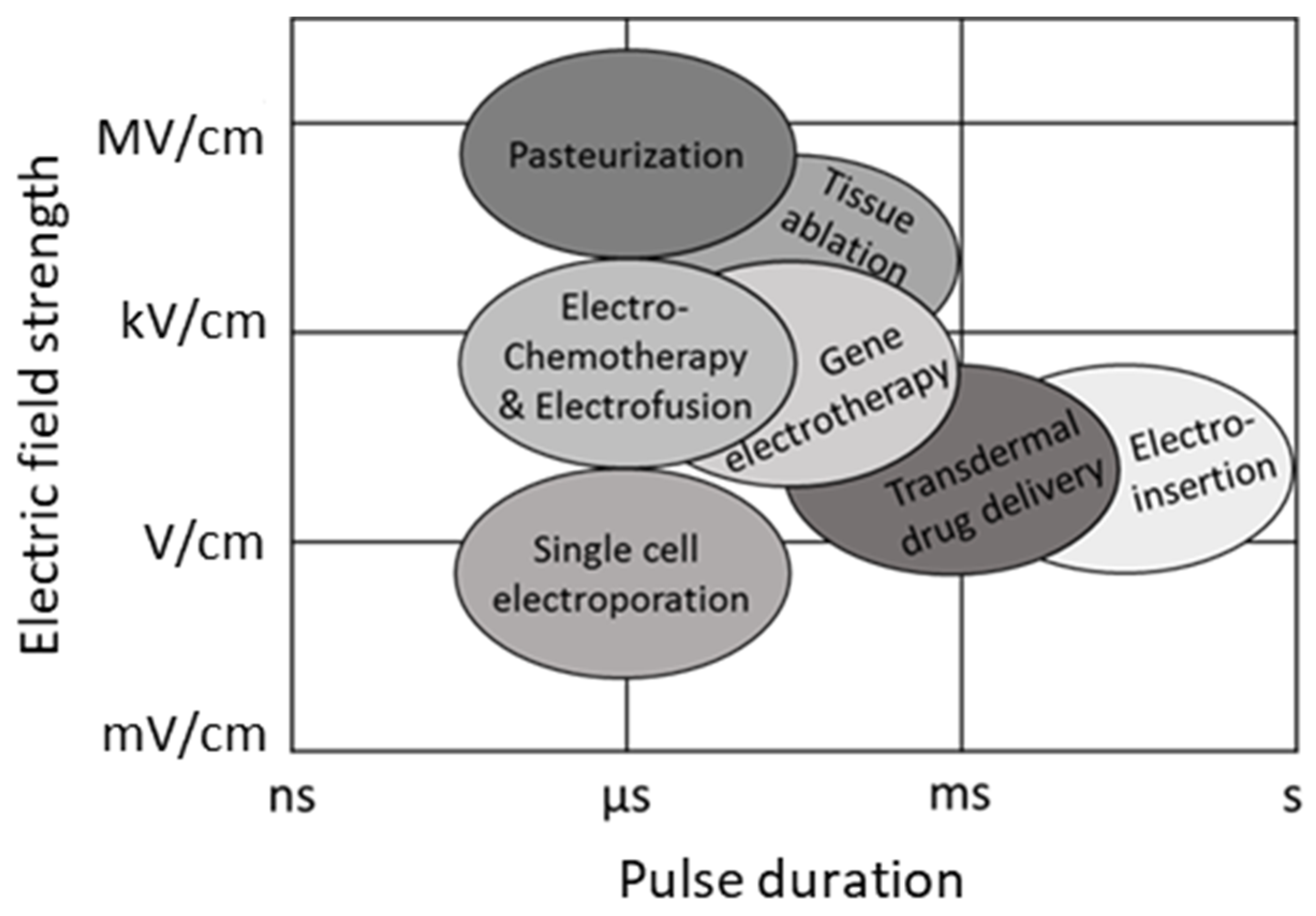 Applied Sciences Free Full Text Concepts And Capabilities Of In House Built Nanosecond Pulsed Electric Field Nspef Generators For Electroporation State Of Art Html