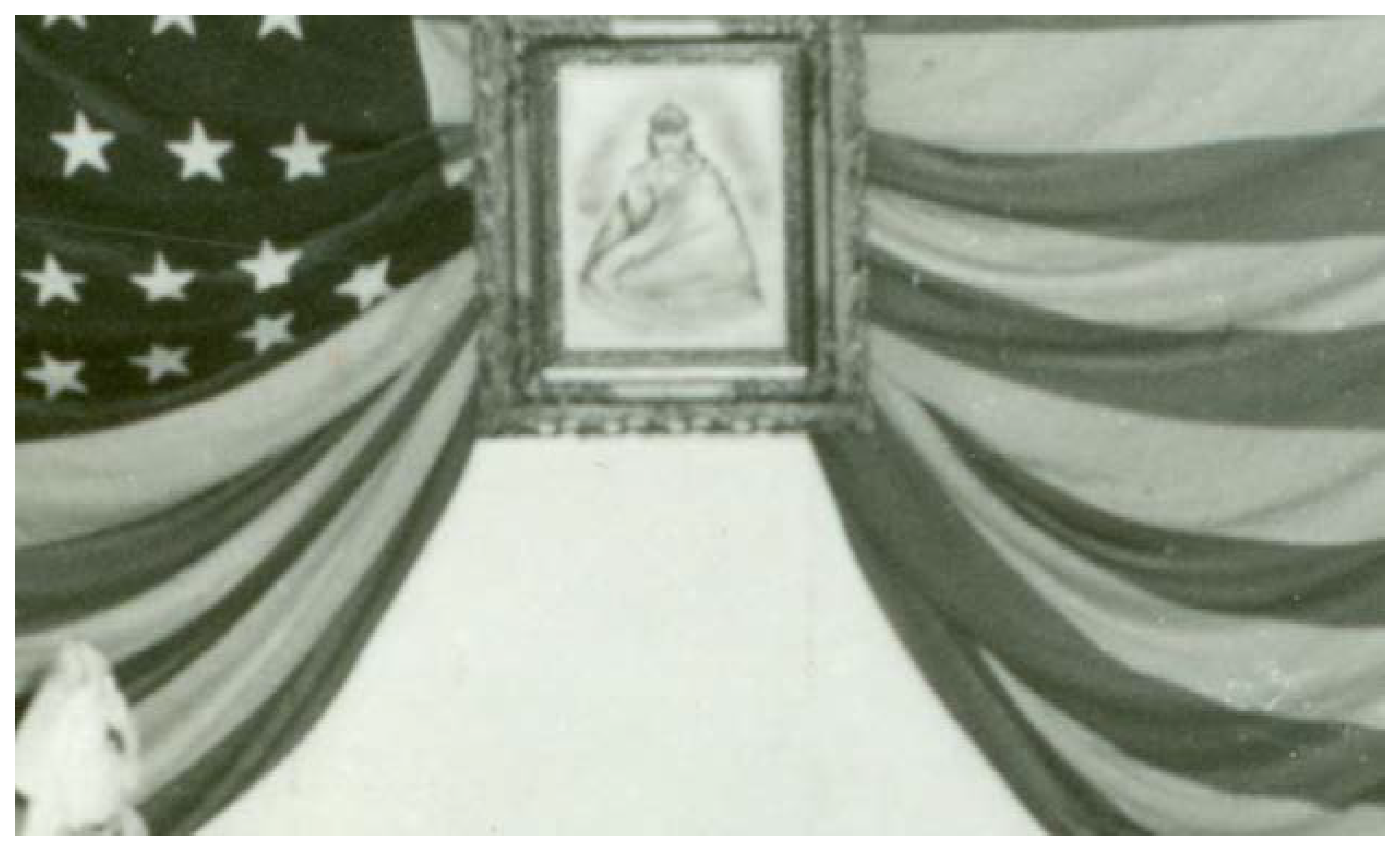 Arts | Free Full-Text | The American Flag and the Alaska