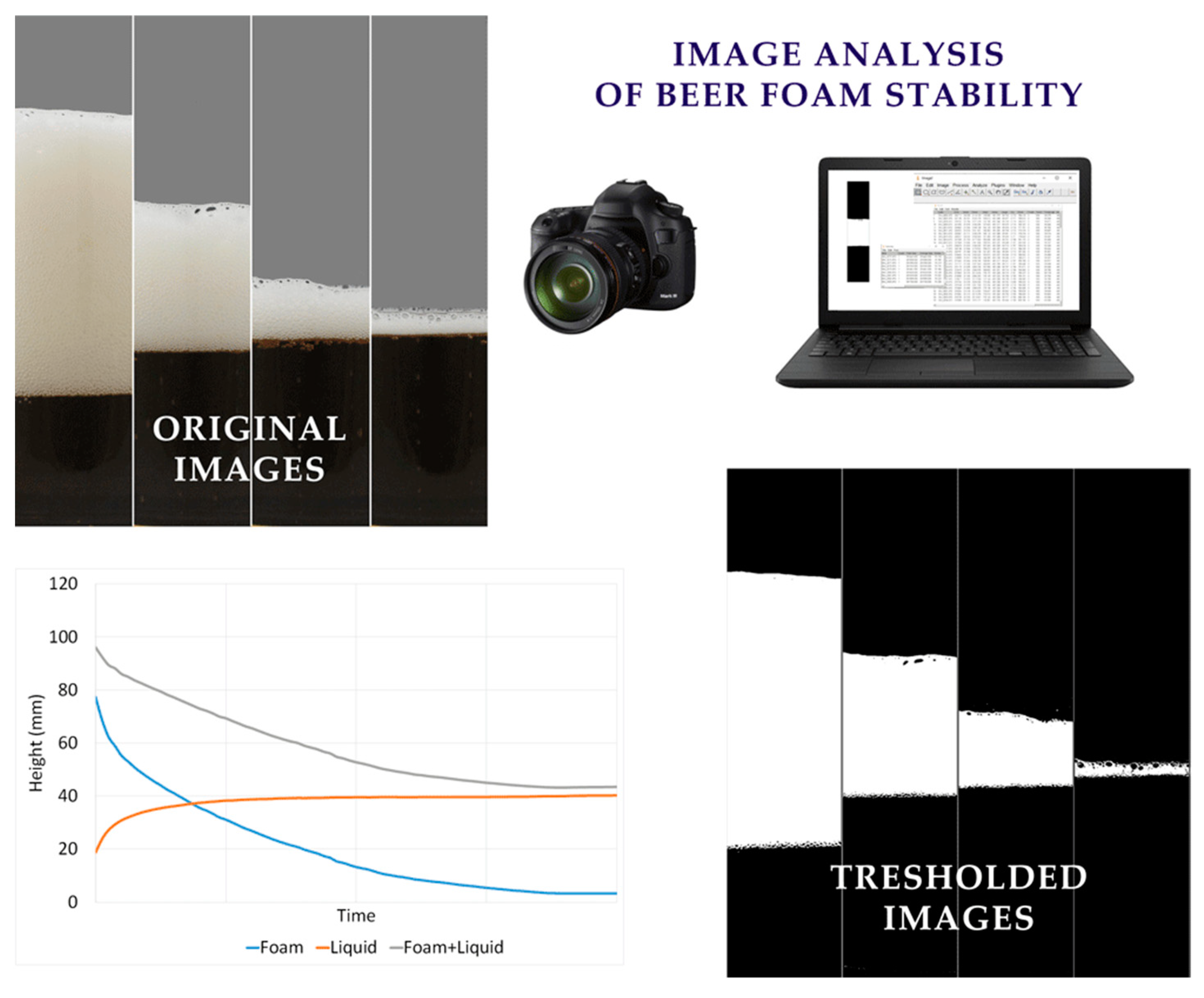 Beverages | Free Full-Text | Computer Vision Method in Beer Quality
