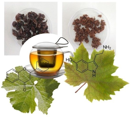 Beverages | Free Full-Text | Grape Infusions: The Flavor of