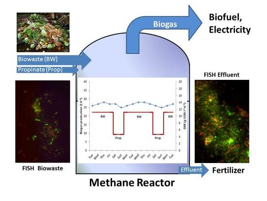 Microbial Community Shifts during Biogas Production from Biowaste and-or Propionate