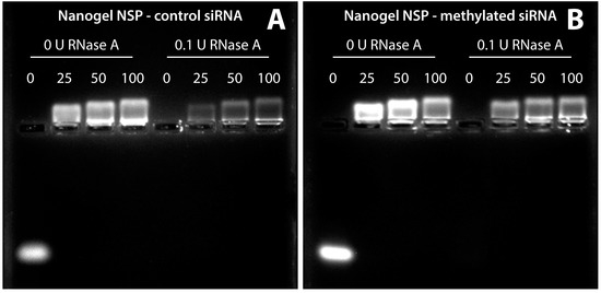 In Vivo GFP Knockdown by Cationic Nanogel-siRNA Polyplexes