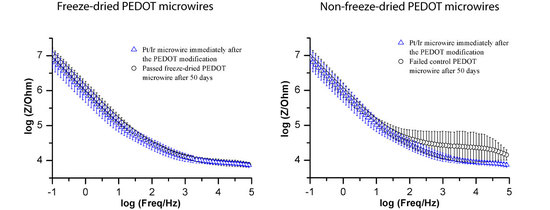 Freeze Drying Improves the Shelf-Life of Conductive Polymer Modified Neural Electrodes