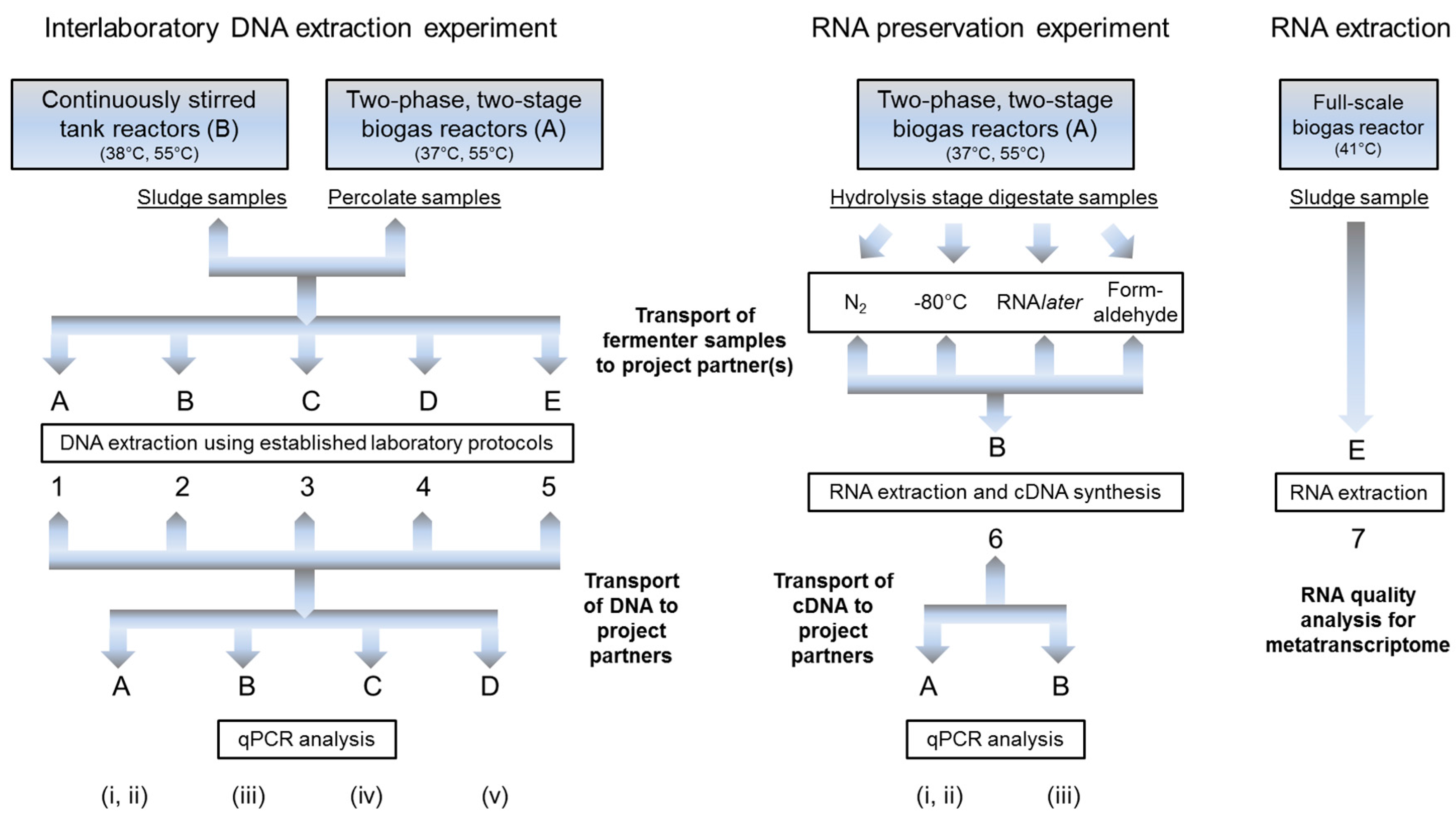 Bioengineering | Free Full-Text | DNA and RNA Extraction and