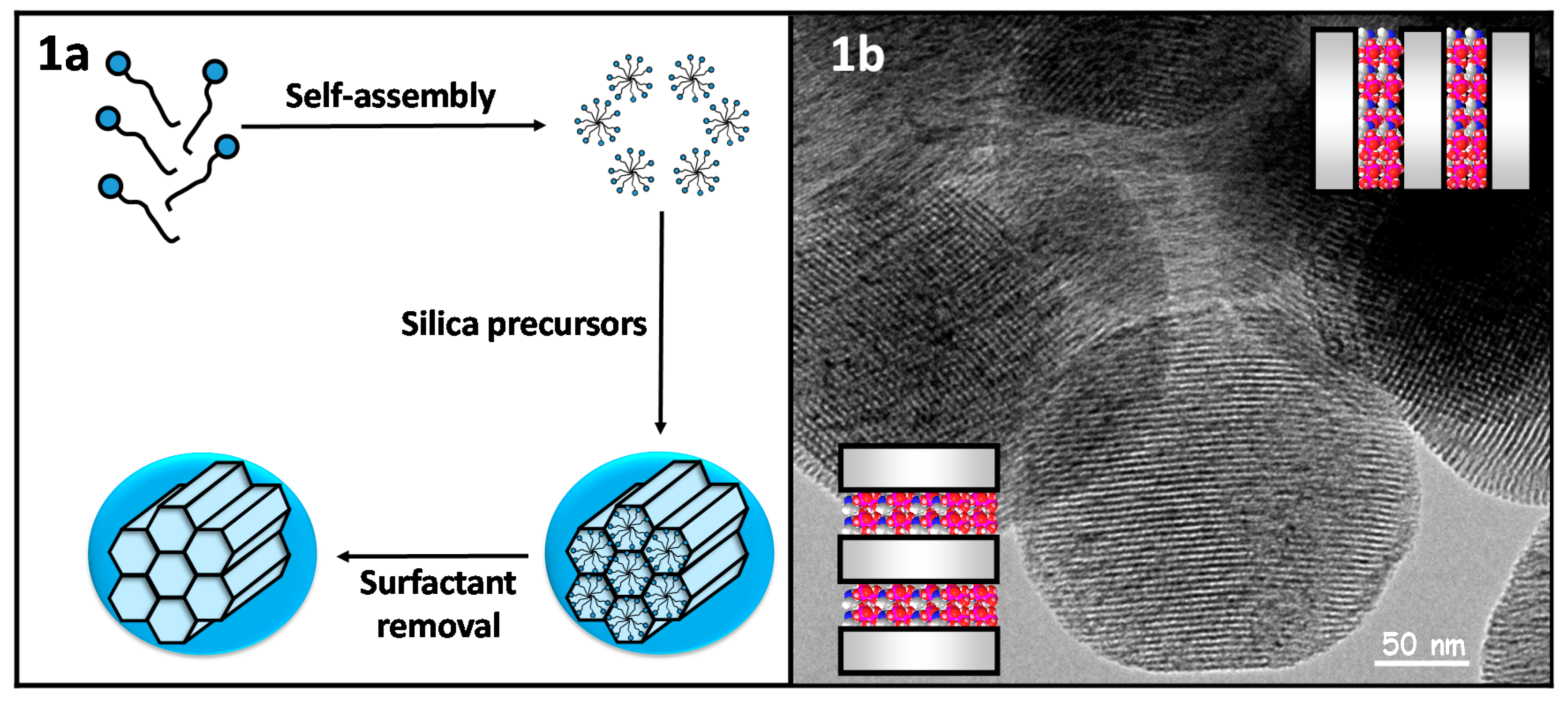 mesoporous silica nanoparticles in drug delivery and biomedical applications