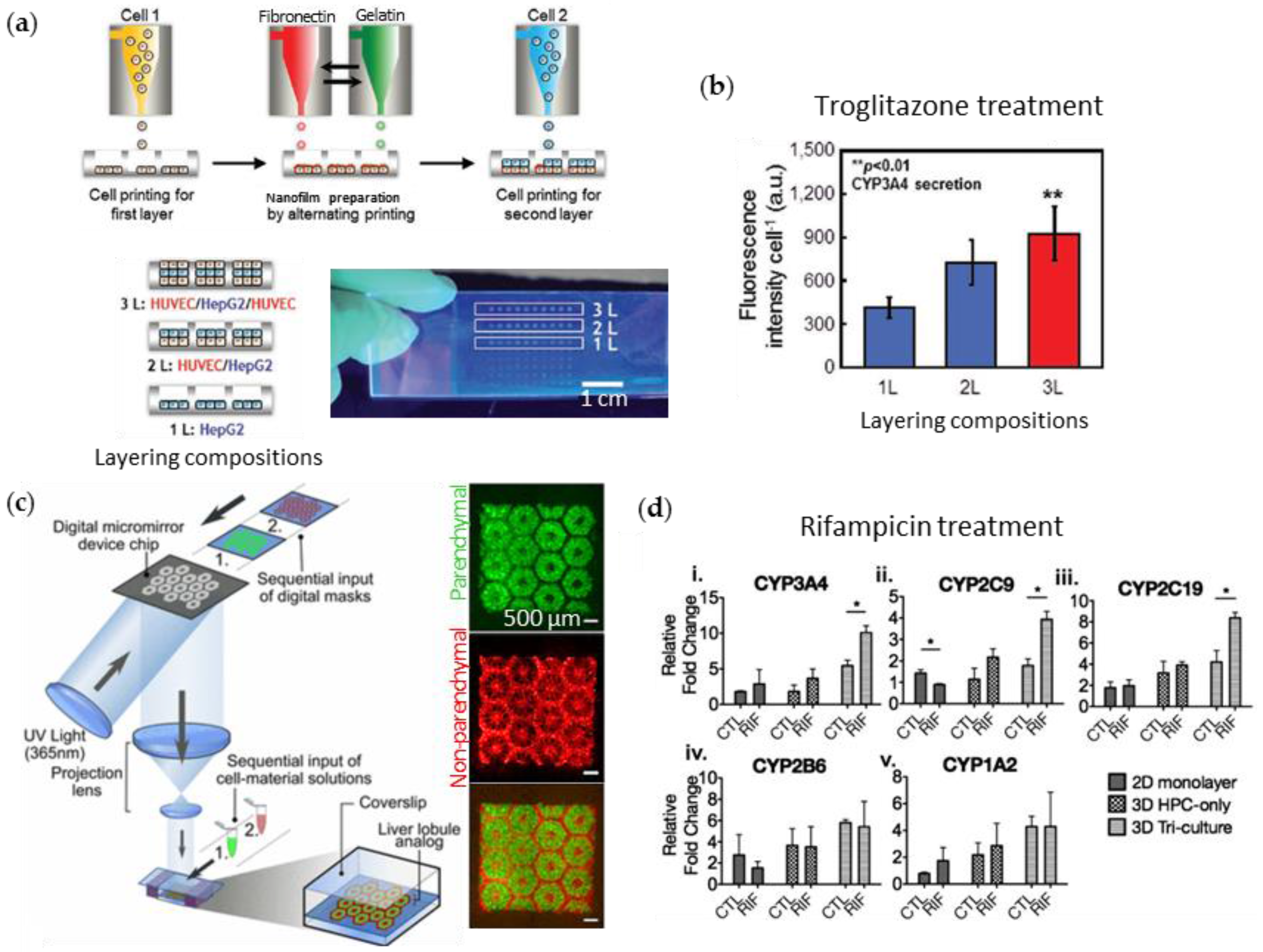 3d bioprinting of tissues and organs pdf