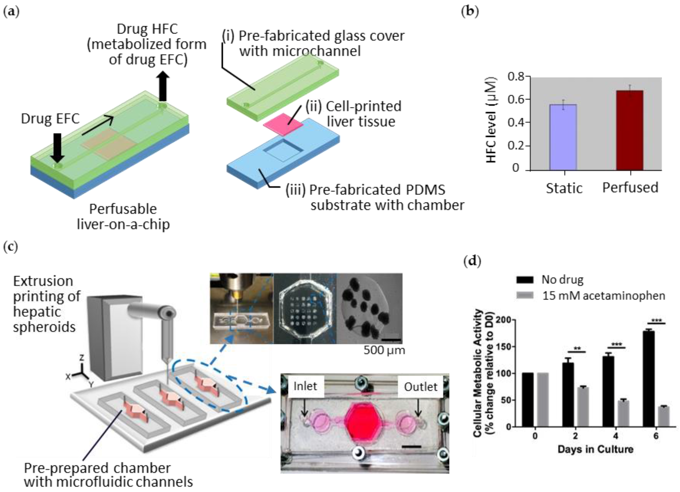 Bioengineering Free Full Text 3d Printing Of Organs On Chips Cell Diagram No