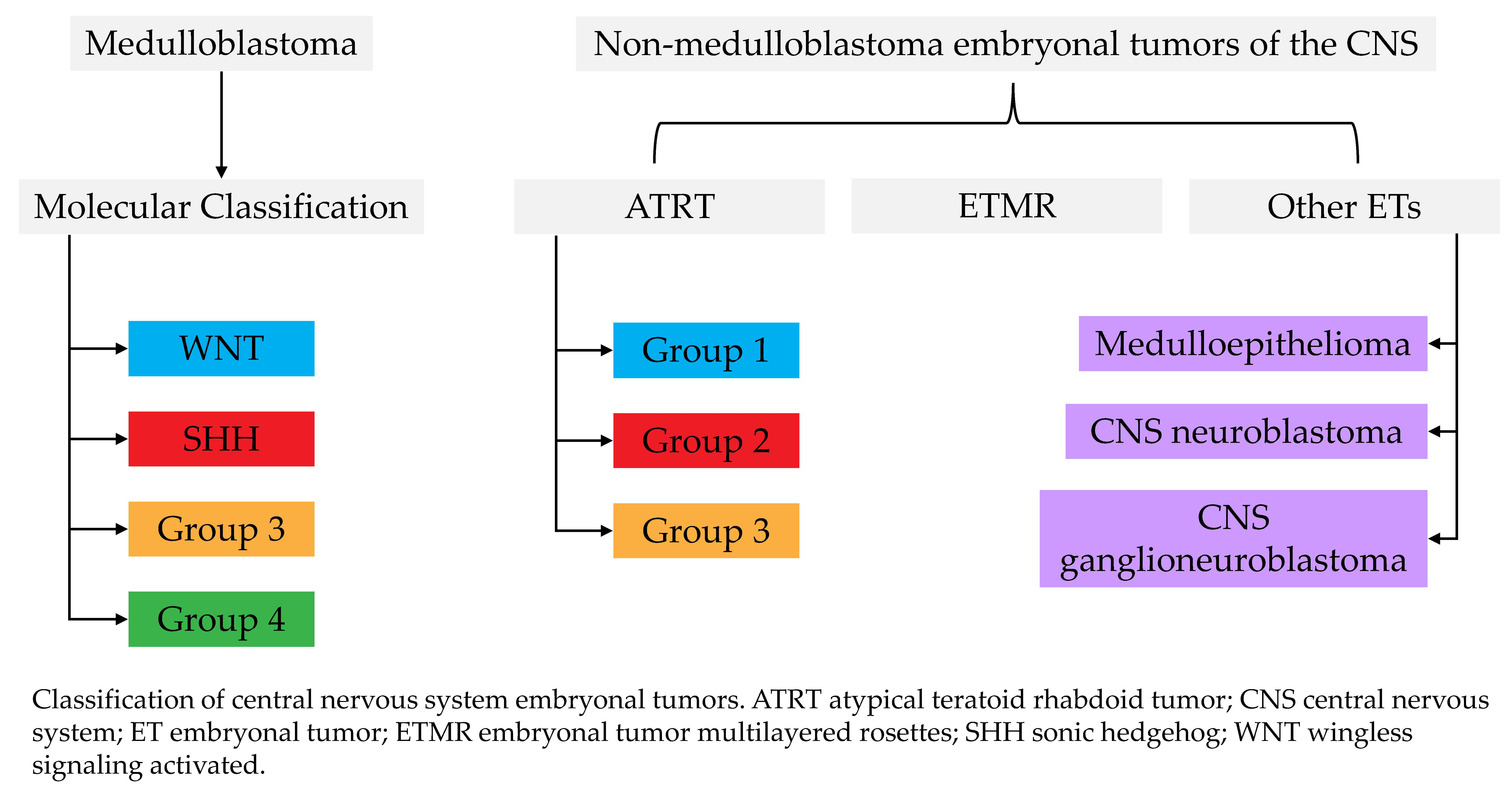Bioengineering Free Full Text Embryonal Tumors Of The Central