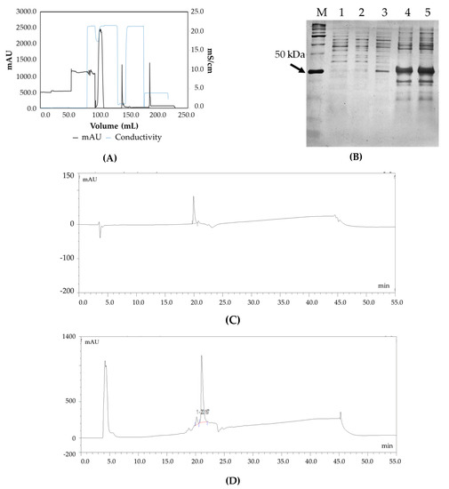 bioengineering | free full-text | qbd based media development for the  production of fab fragments in e  coli