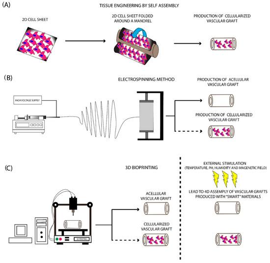 Bioengineering 07 00160 g003 550