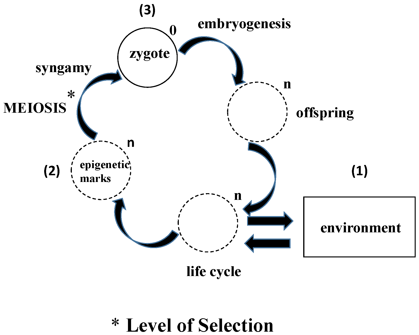 simple biology articles