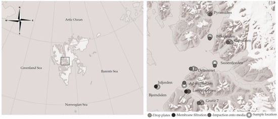 Characterisation of Arctic Bacterial Communities in the Air above Svalbard