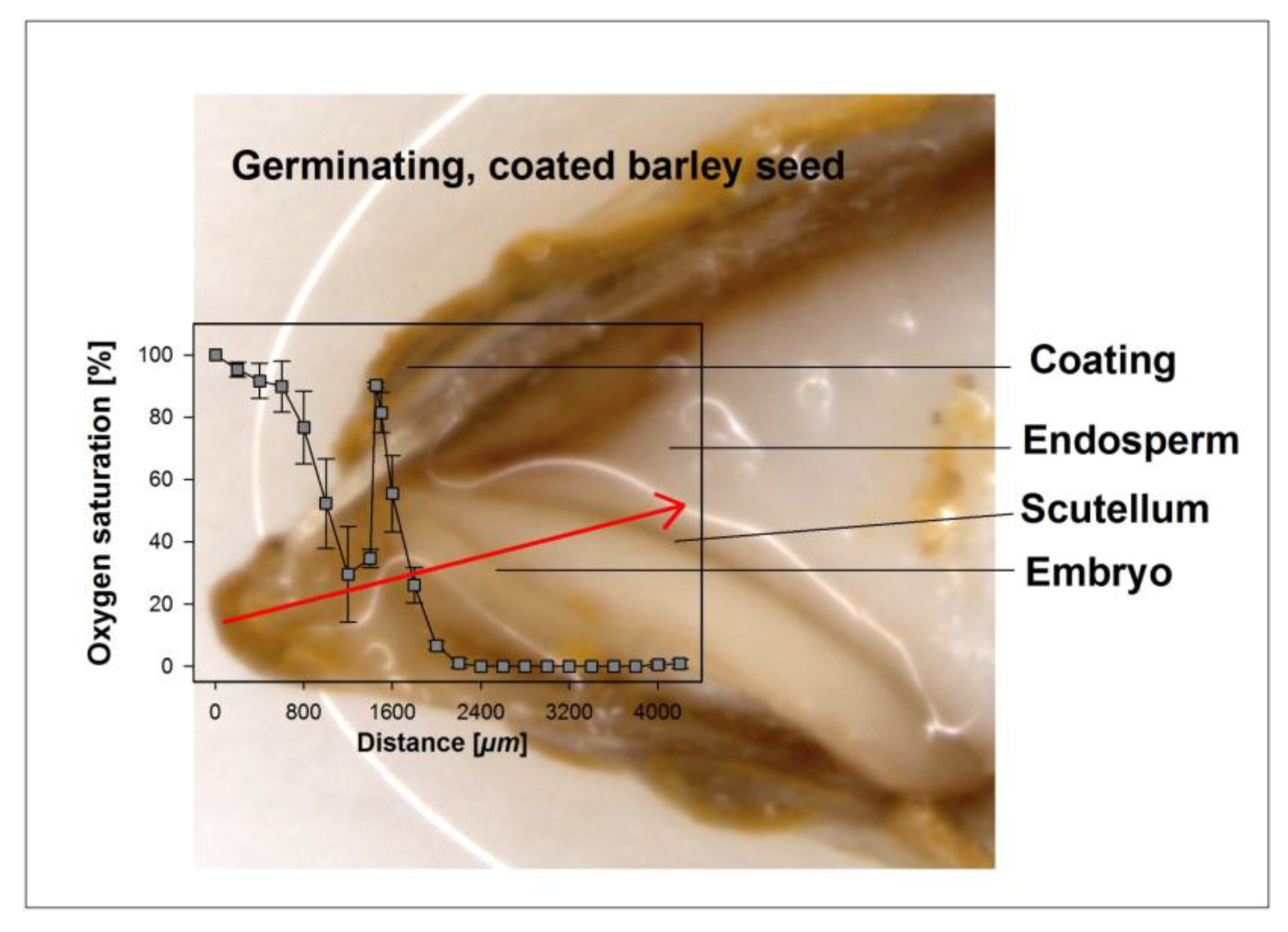 Biology Free Full Text Seed Coating Increases Moisture Germination Diagram It Works From No
