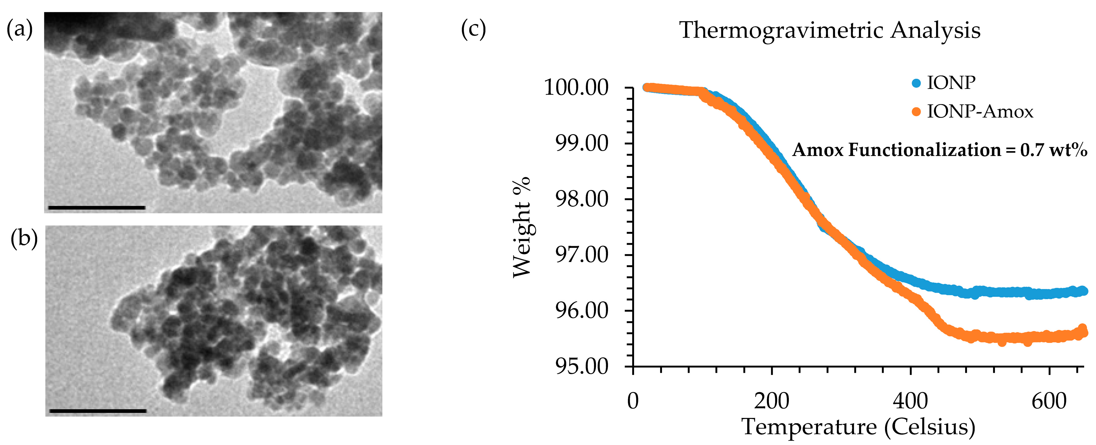 The Effect of Gold and Iron-Oxide Nanoparticles on Biofilm-Forming Pathogens