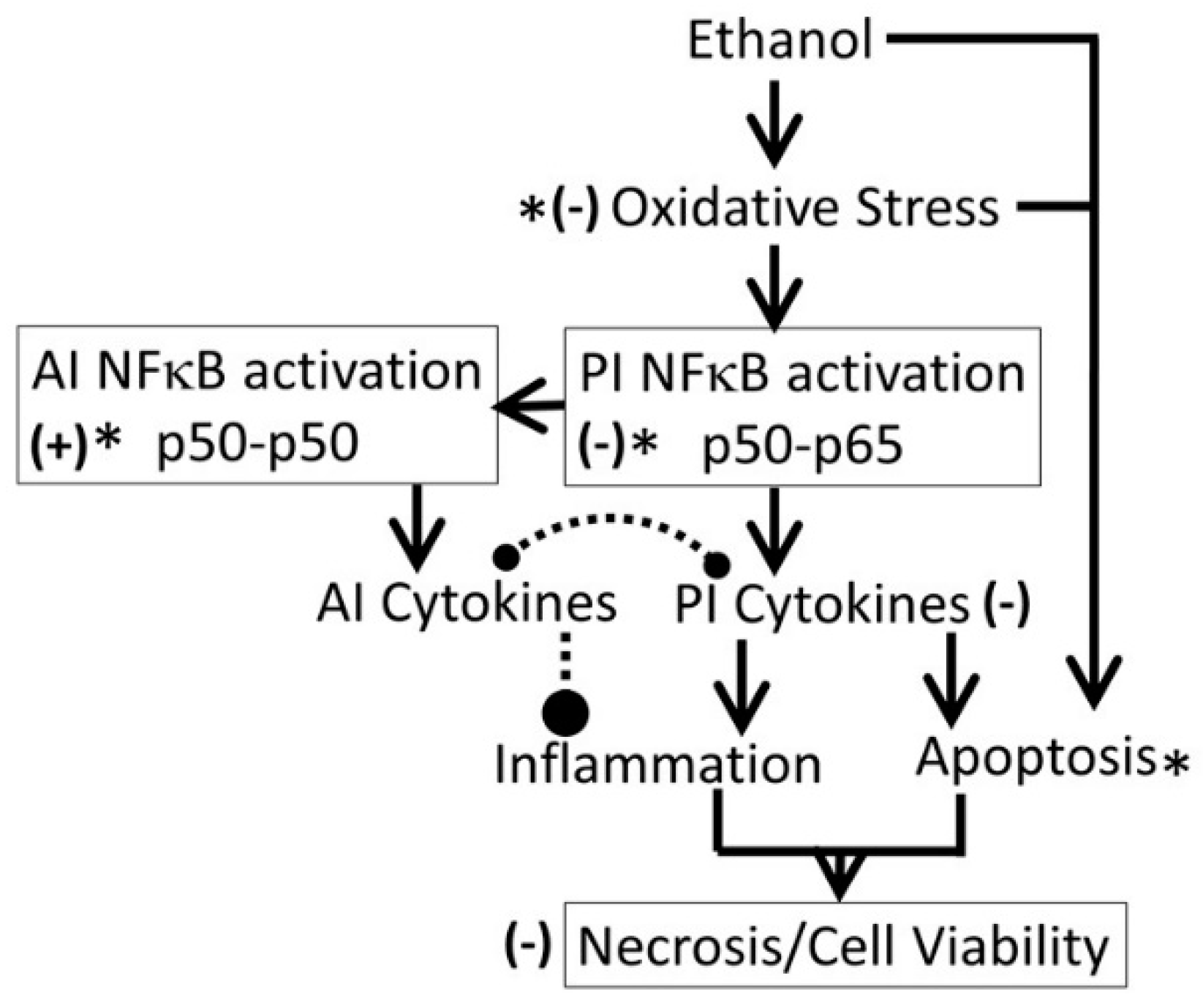effects of activators and ethanol on Investigate the effects of ethanol concentration on the rate of this  activators are molecules  one response to enzyme-catalyzed oxidation of alcohol.