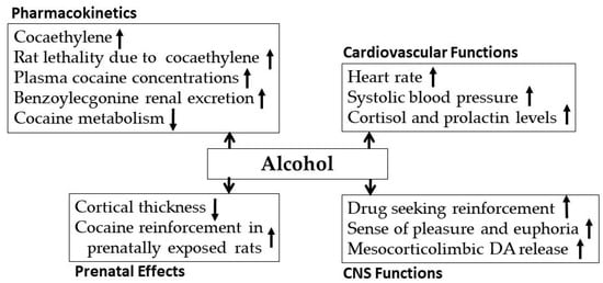 Biomedicines   Free Full-Text   Alcohol Interaction with Cocaine