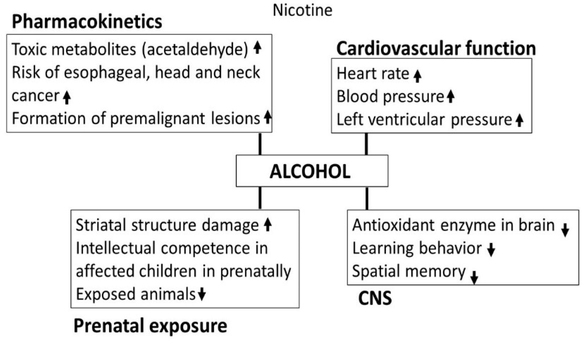 Biomedicines | Free Full-Text | Alcohol Interaction with