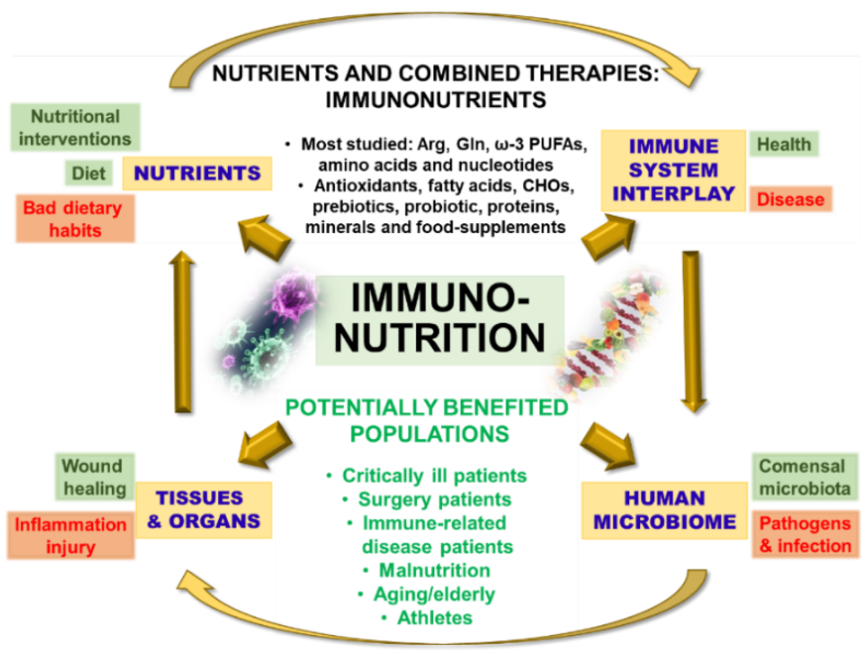 Biomedicines | Free Full-Text | NOD1-Targeted Immunonutrition Approaches:  On the Way from Disease to Health | HTML