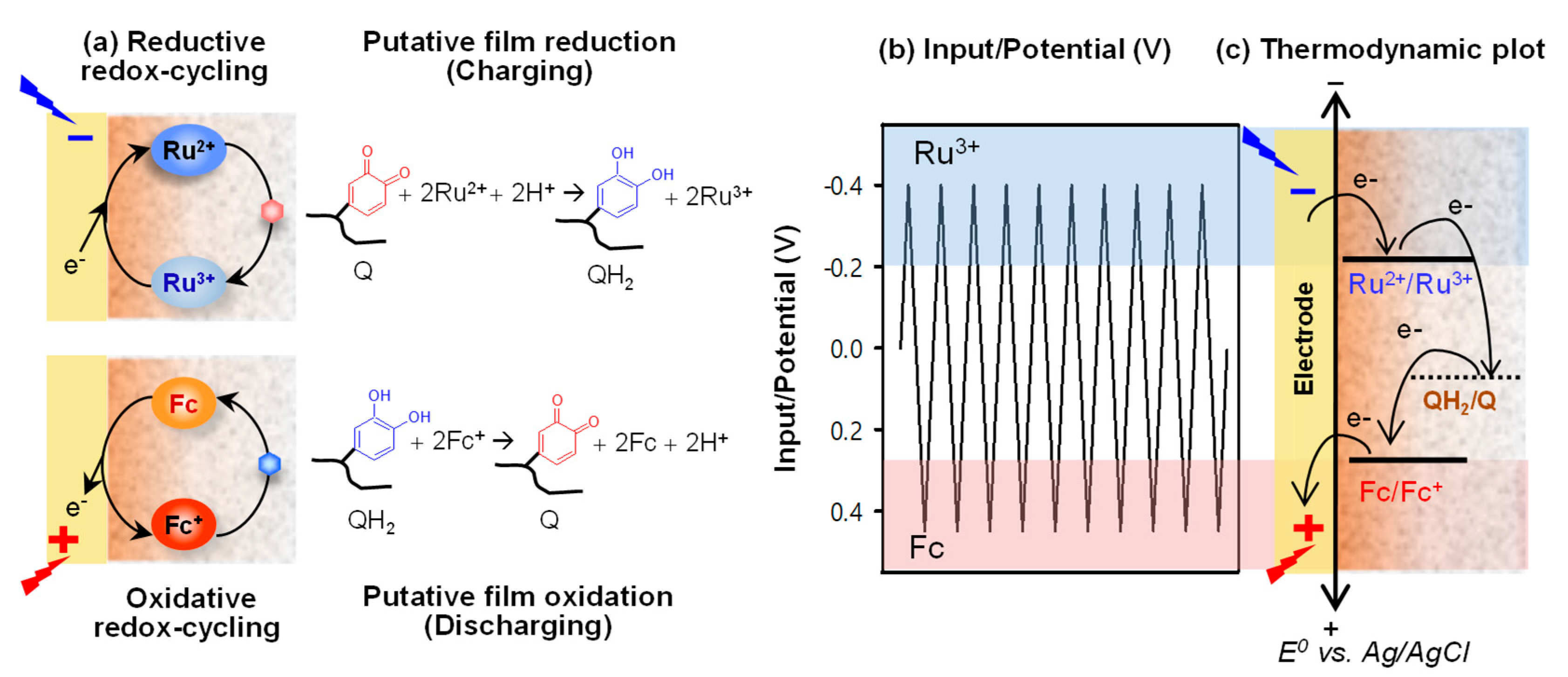 Biomimetics free full text catechol based hydrogel for chemical information processing html