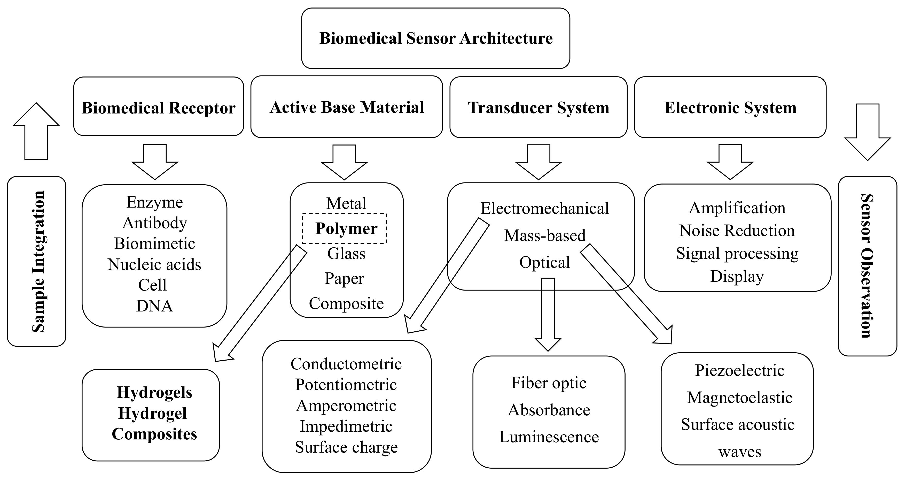 Biomimetics | Free Full-Text | Hydrogel Actuators and Sensors for