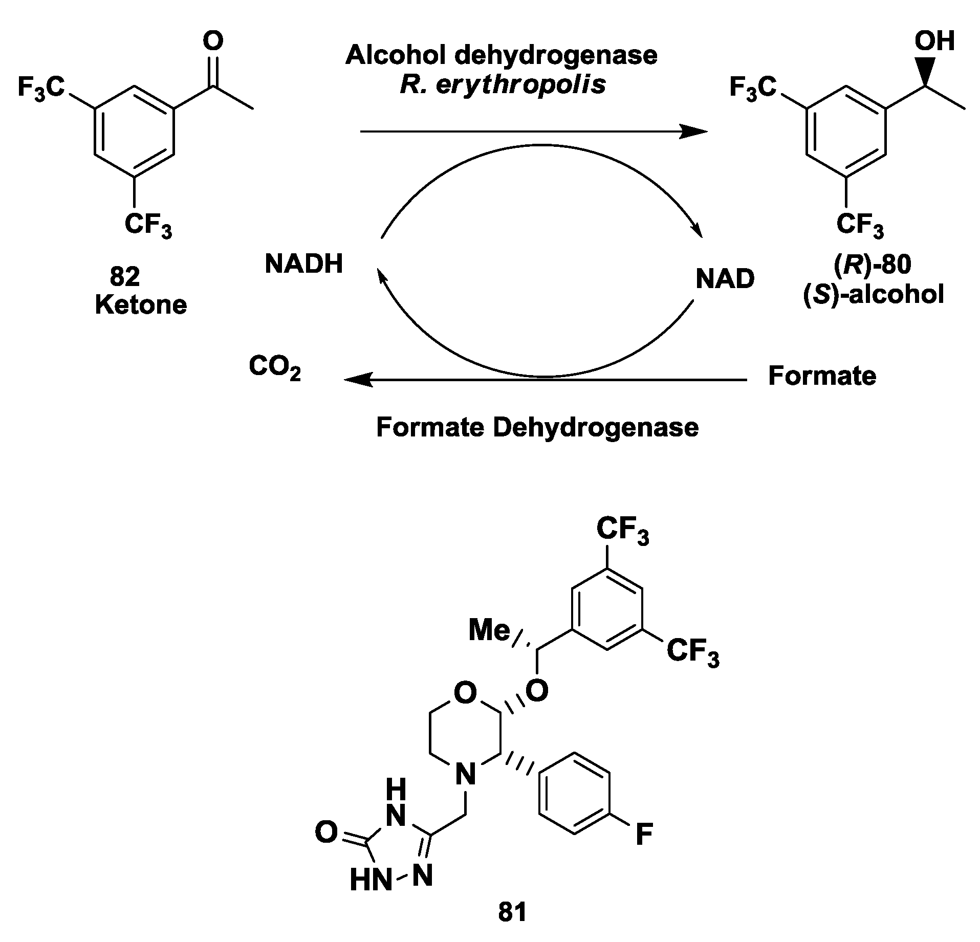 Of chiral alcohols and amino acids for development of pharmaceuticals