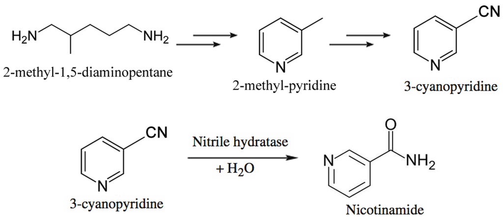 Nicotinic acid synthesis essay