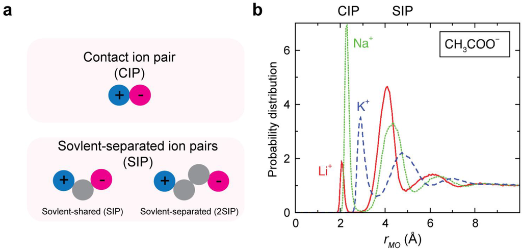Service Fusion Login >> Biomolecules | Free Full-Text | Physicochemical Properties of Ion Pairs of Biological ...
