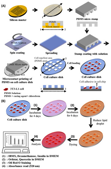 biomolecules free full text simple analysis of lipid inhibition activity on an adipocyte micro cell pattern chip
