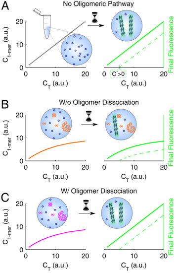 Biophysical interactions case study