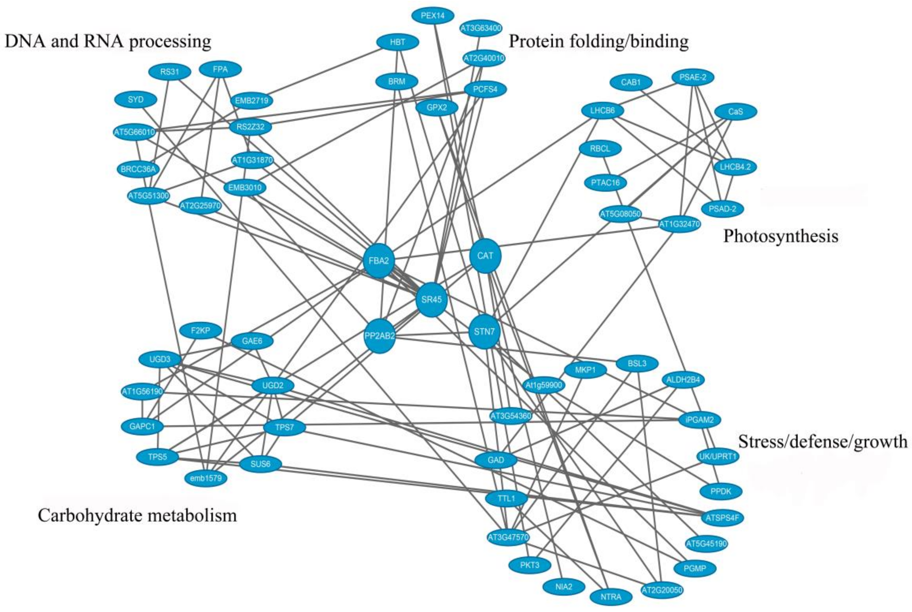 Biomolecules | Free Full-Text | Proteomic and