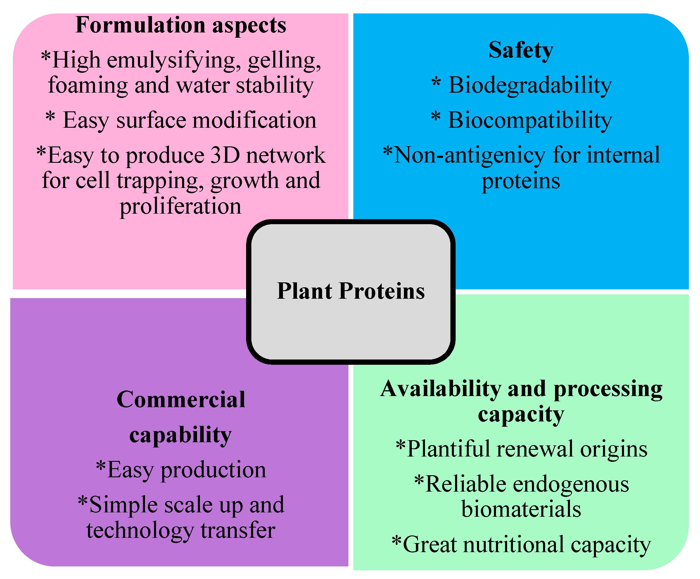 Biomolecules Free Full Text Status Of Plant Protein
