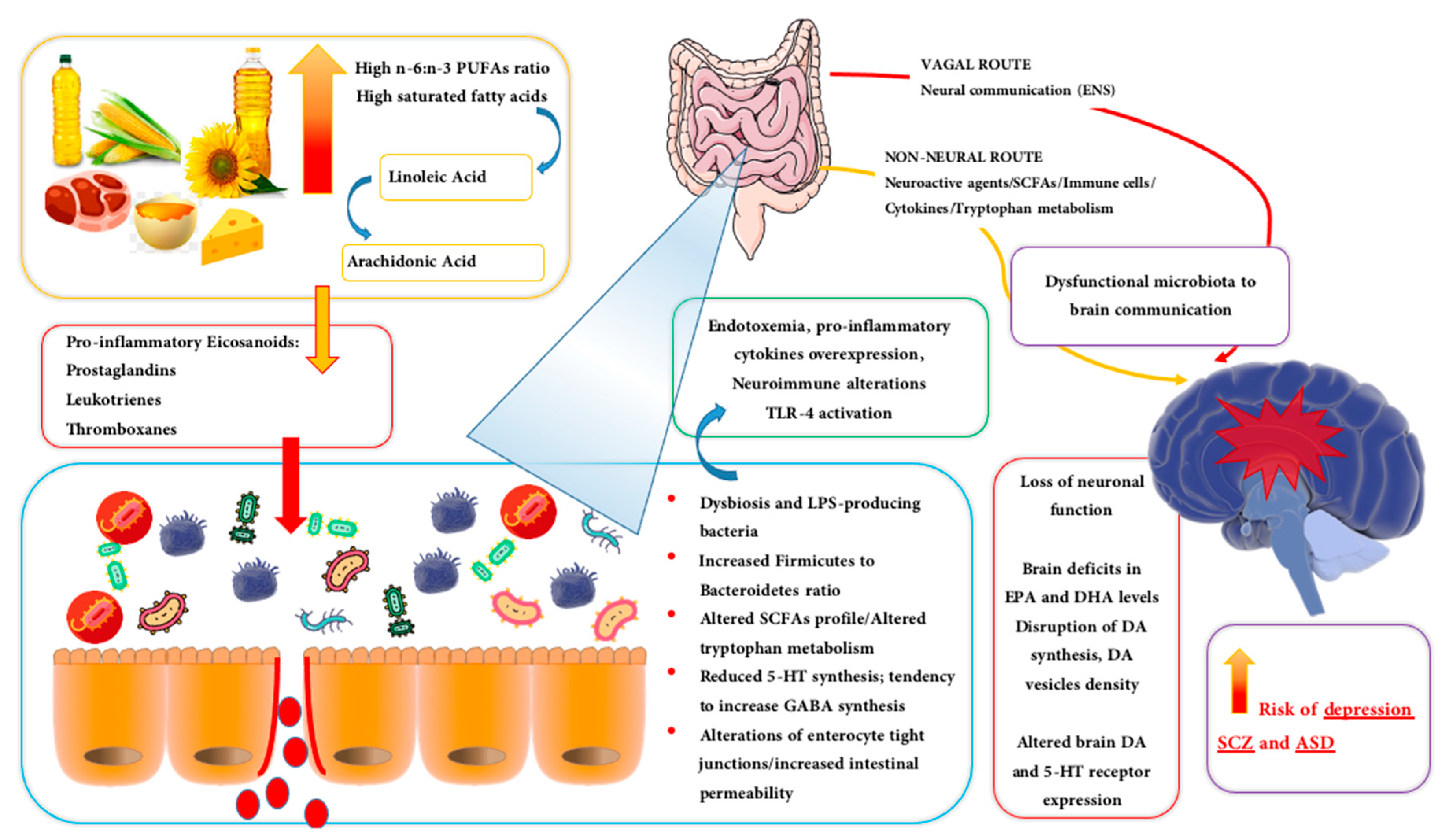Biomolecules Free Full Text Dietary Fatty Acids And