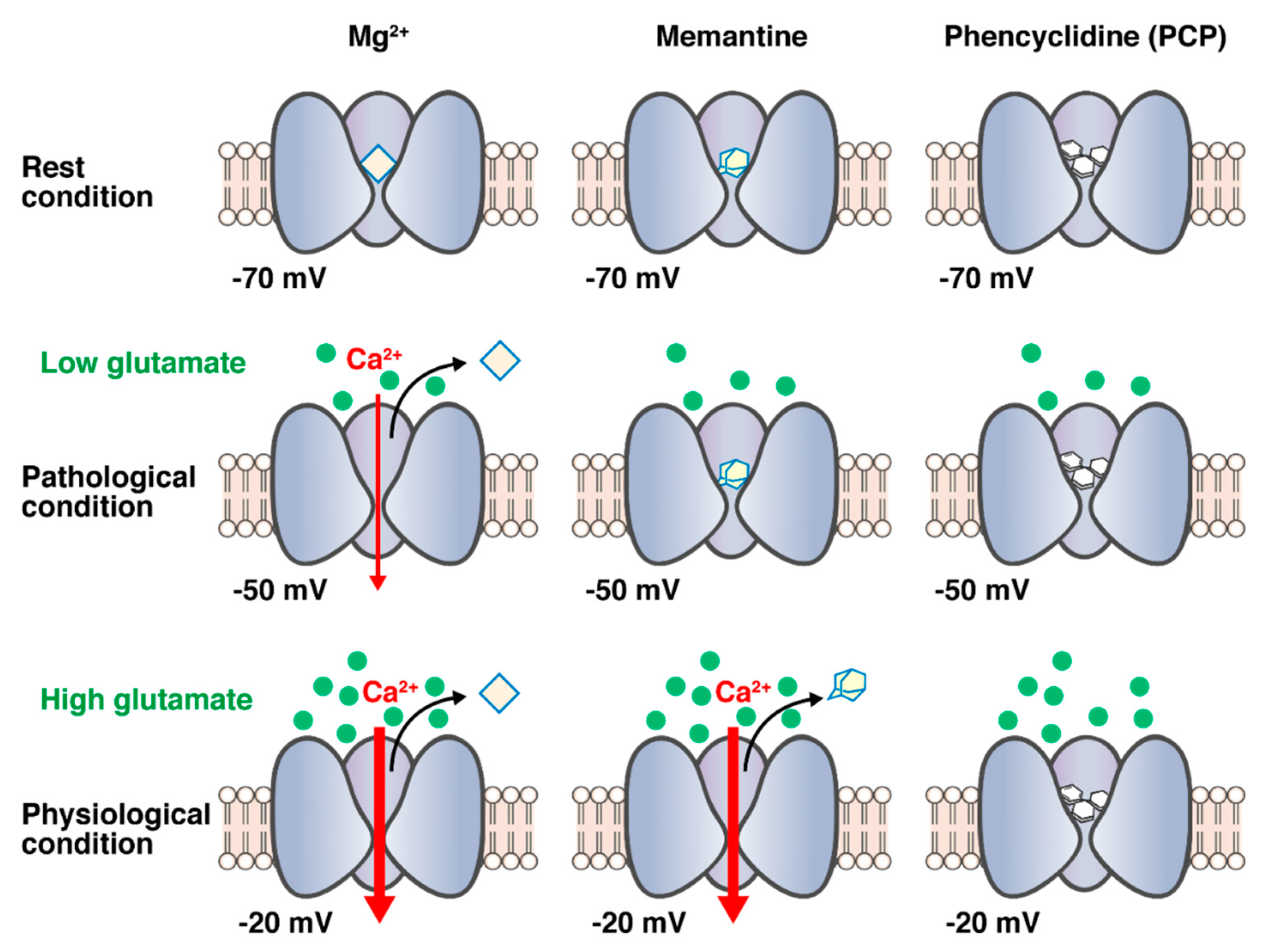 anti nmda receptor encephalitis clock