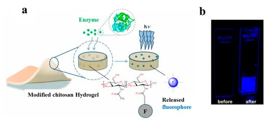 Biomolecules 10 01169 g007 550
