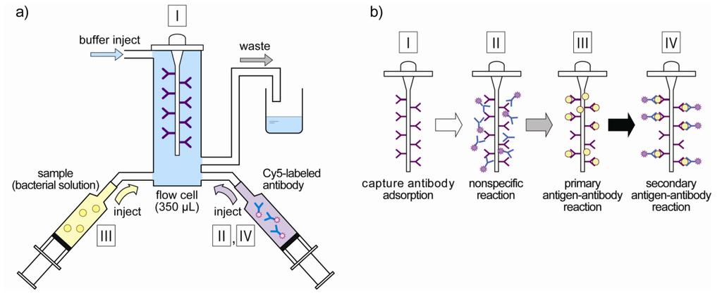 evanescent wave fluorescence biosensors pdf